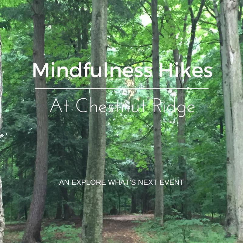 Mindfulness Hike-3
