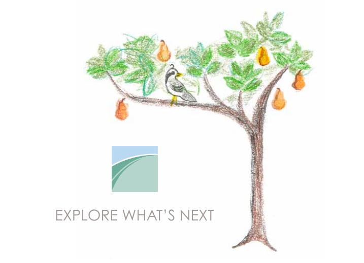 EWN Pear Tree